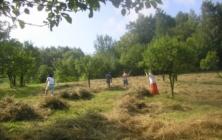 Kosení luk na kopanicích