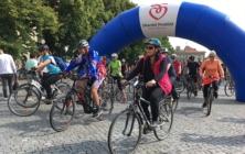 Na kole vinohrady, léto 2020