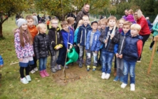 Den stromů v ZŠ Boršice