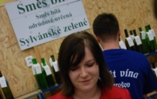 Košt vína v Jarošově