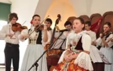 Ostrožský slavíček 2013