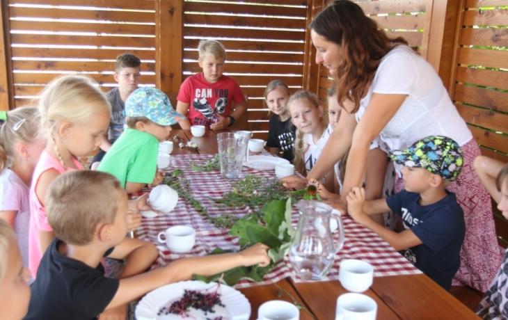Děti prožily v Muzeu keramiky úžasný bylinkový týden