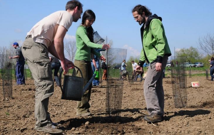 Zastupitelé Hluku oslavují Svátek práce výsadbou stromů
