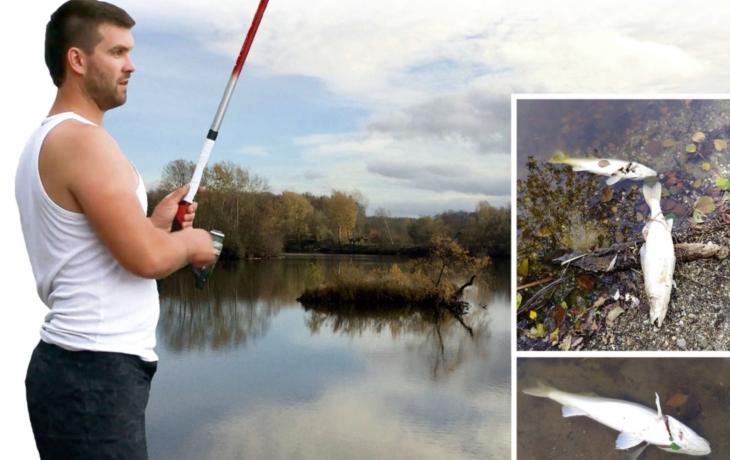 Záhadný úhyn candátů! Rybáři hovoří o otravě, úřad o nedostatku kyslíku