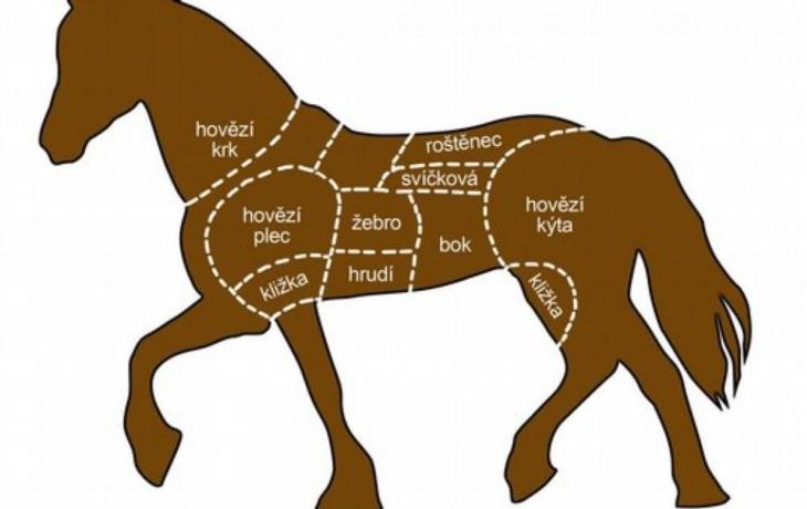 Koňské maso vydávali za hovězí, na krku mají veterináře