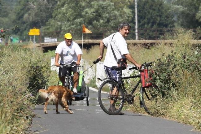 Na cyklostezkách jde o život! Lékaři denně ošetří 10 zraněných