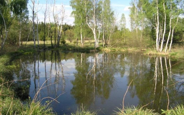 Lipov vyčlenil 17 hektarů, poblíž větrolamu vybuduje mokřad