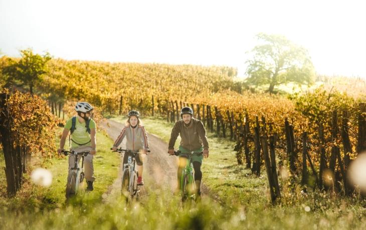 Na kole mezi vinohrady až o prázdninách