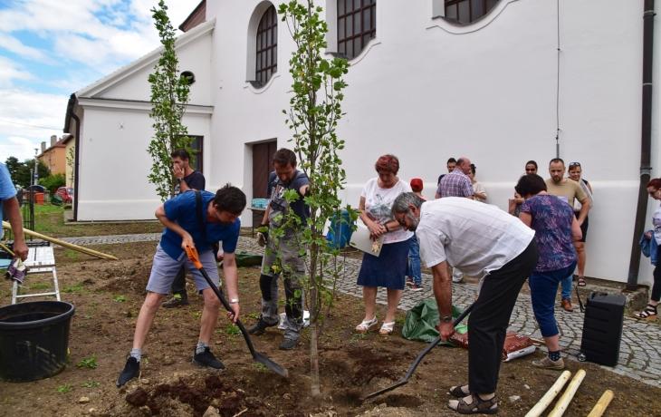 Lidé vysázeli stromy, u chrámu vzniká odpočinková zóna