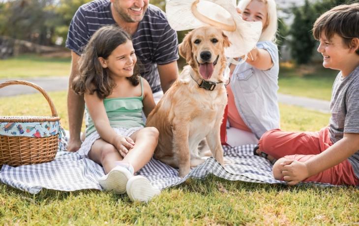 Hvězdný piknik: zábava i vzdělávání v jednom odpoledni