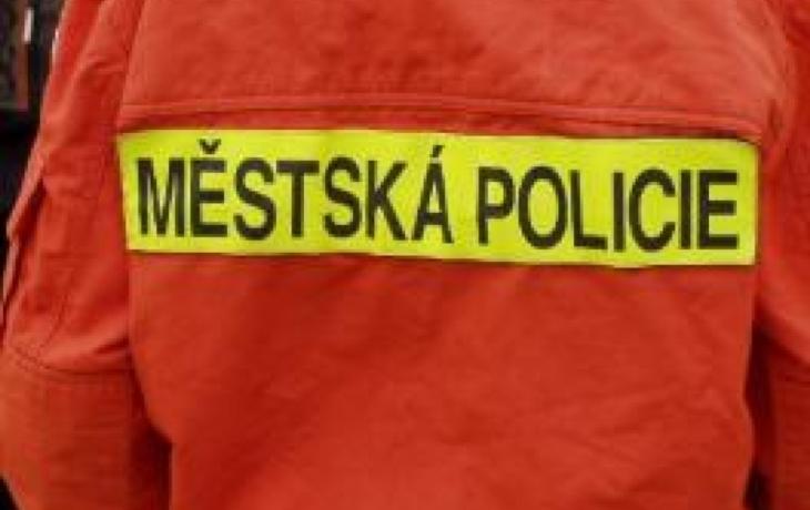 Strážníci končí, státní policie posílila