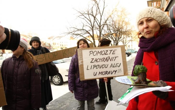 Největší ohlas vzbudila petice za lípy