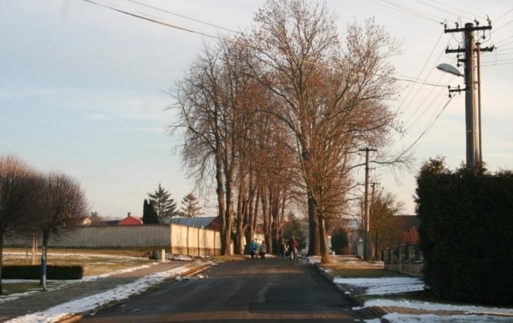 Jírovce u hřbitova zůstanou