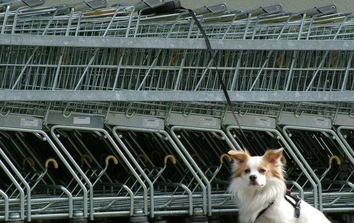 Lidé chtějí supermarket, ale mají smůlu. Žádný z řetězců nemá zájem