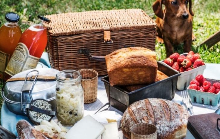 Dojdi na piknik a okoštuj!