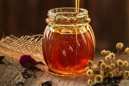 Šokující zjištění! Jak by vypadal život bez včel?