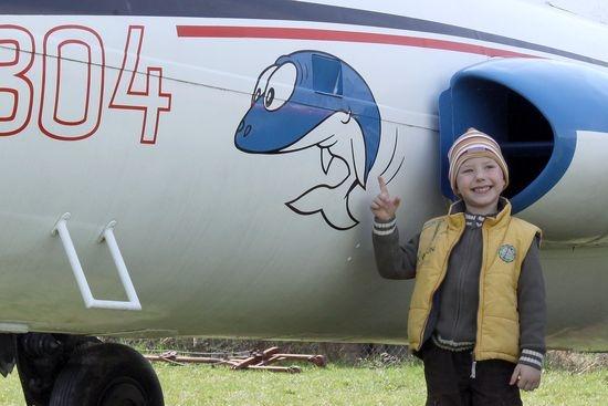 Delfín pomůže zachránit chátrající letouny