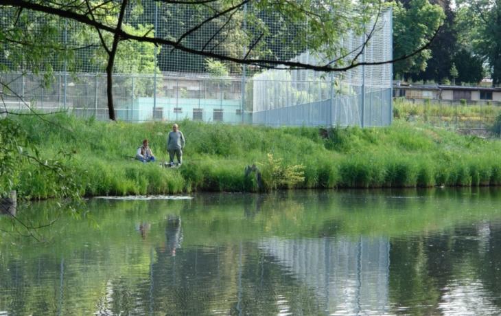 Bzenec vypustí zámecký rybník