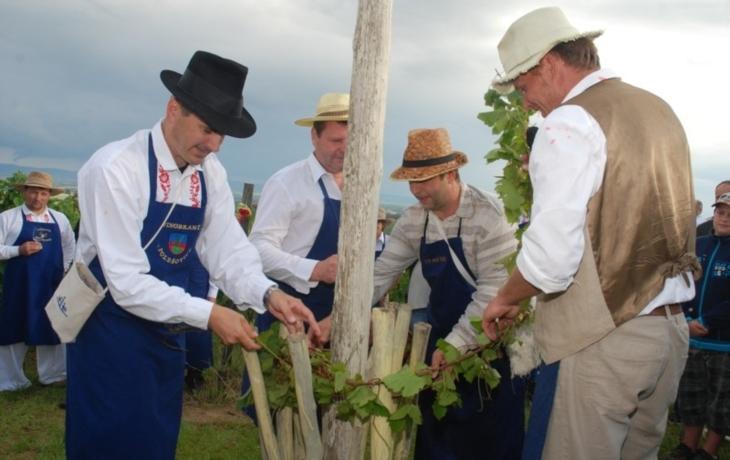 Koštovali vína z Nové hory