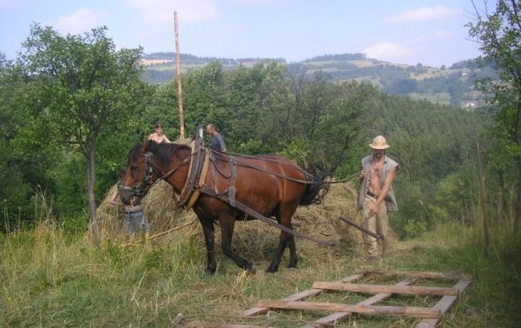 Karpaty chrání už 30 let i dobrovolníci
