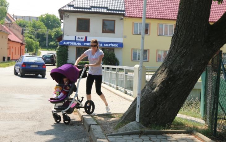 Kuriozita z Březolup: Kaštan roste v chodníku!