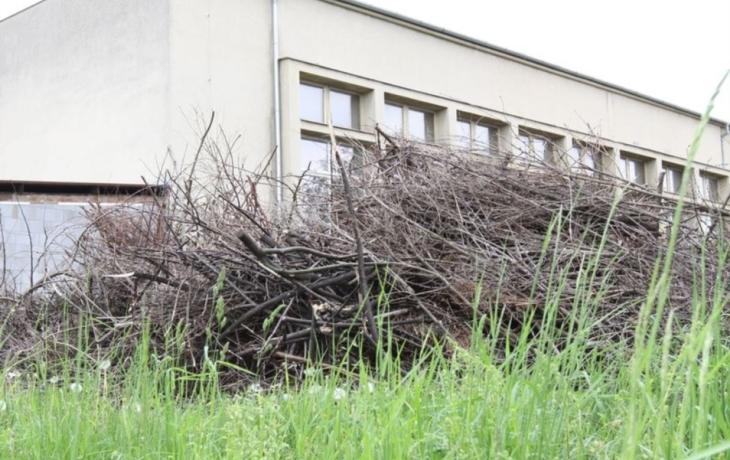 Haldy větví za halou musí zmizet
