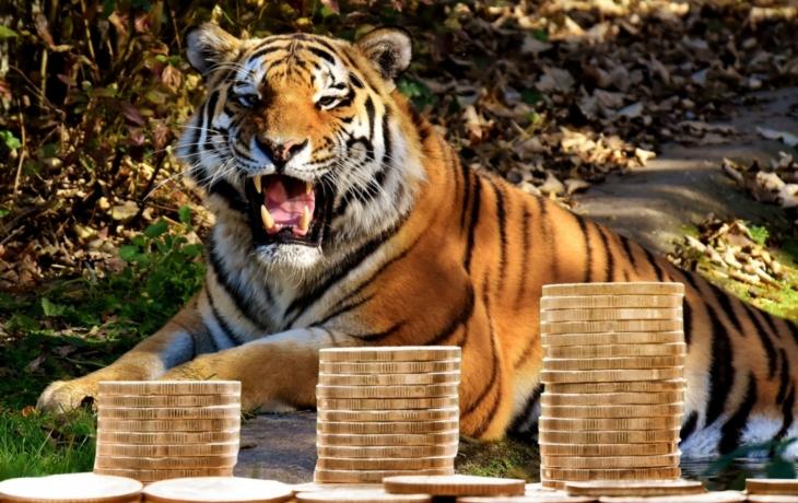 Hradčovice. Ekonomický tygr regionu
