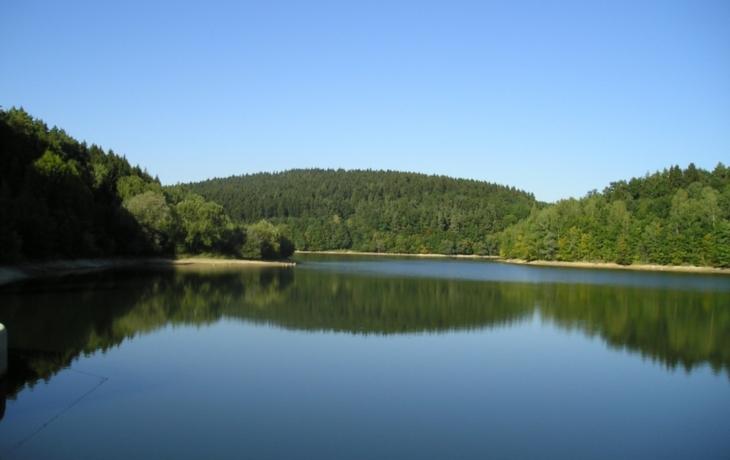 Kolelač je přísně chráněný, ale vodu má stále horší