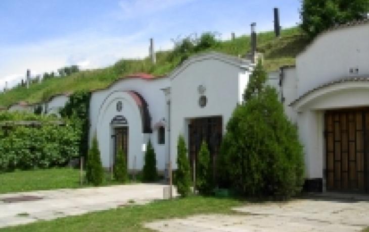 U Strážnice vznikne vinařská vesnice