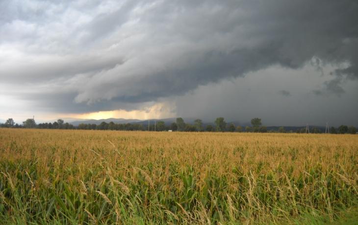 Déšť mění cestu v potok, který splavuje ornici