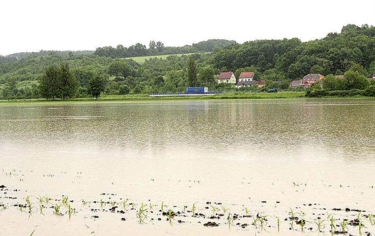 Úrodu ničí voda, škody jsou za miliony
