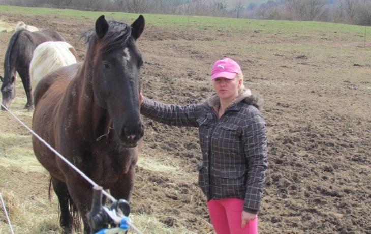 Koně už nestrádají. ale stáj zůstává pod drobnohledem veterinářů