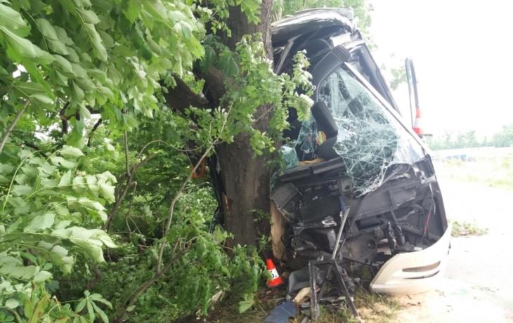 Kdo může za nehodu autobusu? Chyboval řidič?