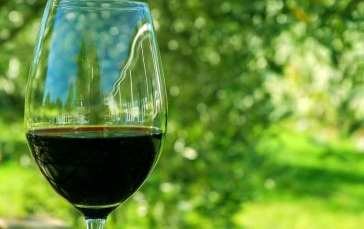 Šmejdi mezi vinaři? Svaz i hejtman žádají o větší ochranu