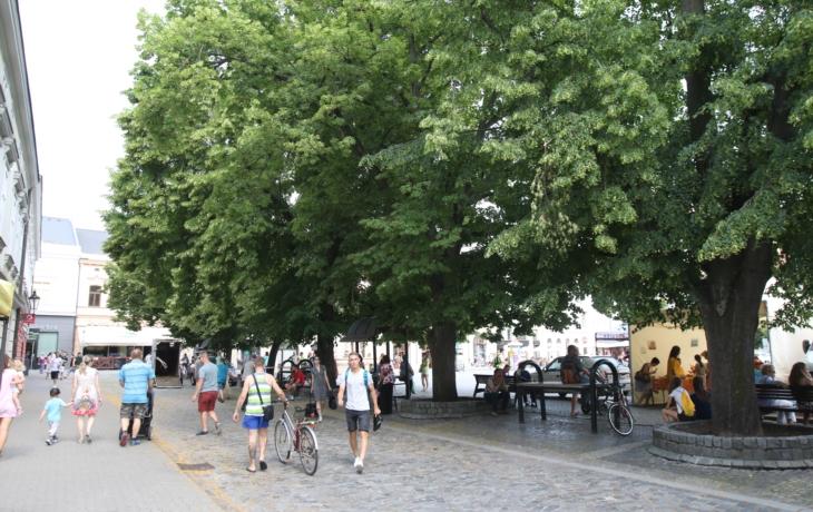 Lipové stromořadí jako památka Uherského Hradiště? Spíš ne
