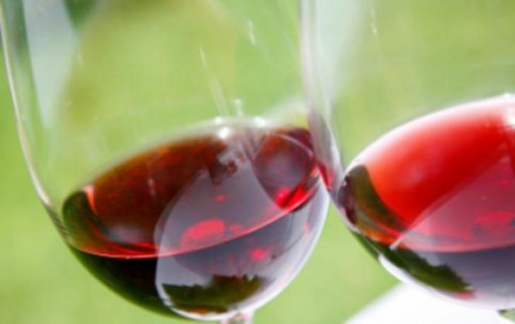 Vinaři jedou demonstrovat s lahví v ruce