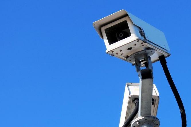 Kamery si posvítí na krádeže dřeva, pytláctví i závody
