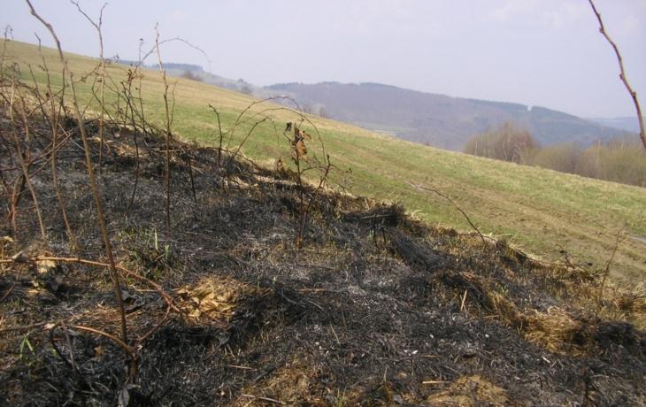 Lidé vypalují trávu i v chráněné oblasti!