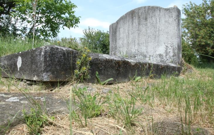 Hrob Markuse Reicha, kterého zabila cholera, se neopraví