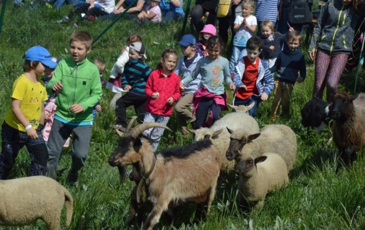 Na Rochusu zahájili pasteveckou sezónu