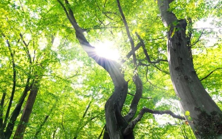 Nivnici uleví nový větrolam, vznikne na konci léta