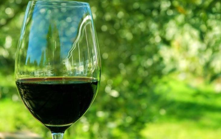 Brod plánuje vlastní slavnosti vína, Maďaři chtějí dovážet pivo