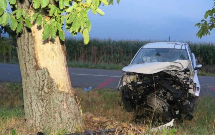 Řidička upadla do mikrospánku, vlétla přímo do stromu