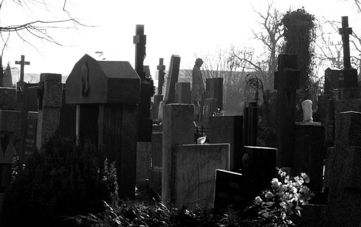 Dělníci opět míří ke hřbitovu. Vyhnou se dalšímu fiasku?