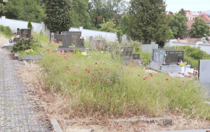 Brod přebírá správu nad Starým hřbitovem