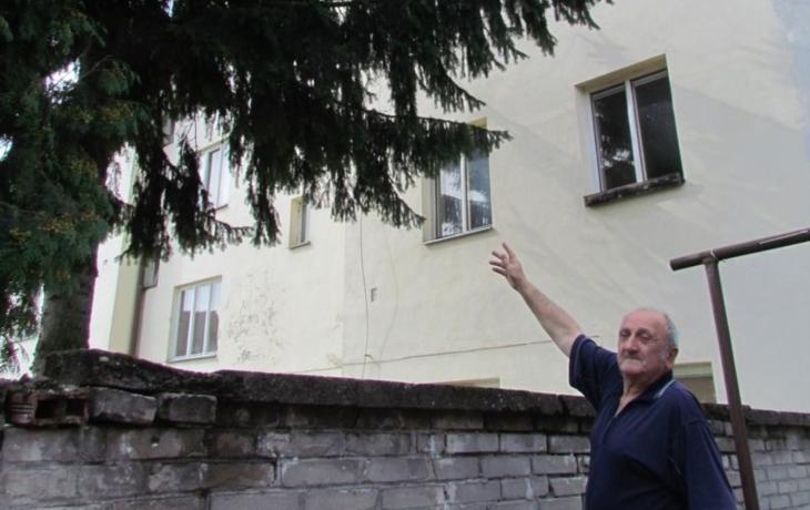 Chudobinec Benátky se změní v bytovky. Co bude se stromem?