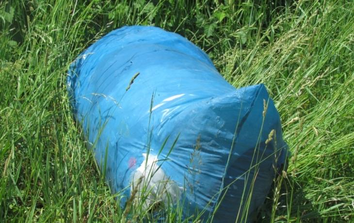 Cestu lemoval odpad z asijských tržnic