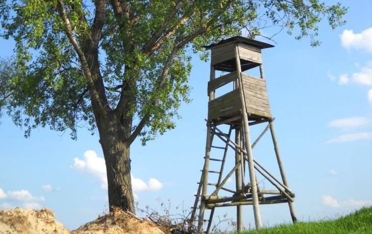 Myslivci se o les nepostarají, najali si správce