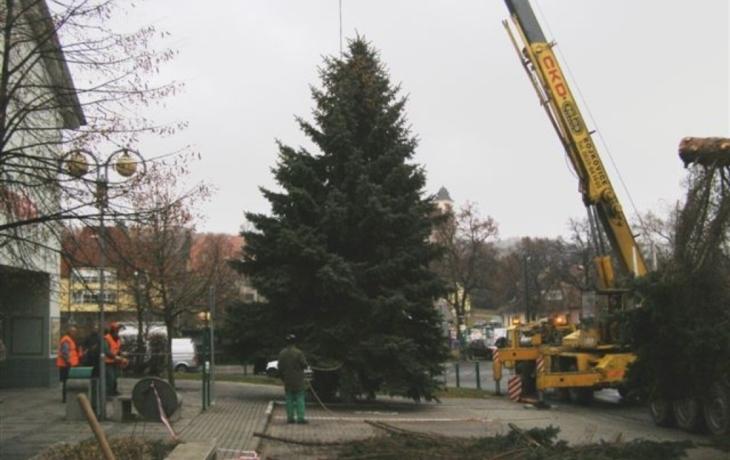 Bojkovice dostaly stromeček