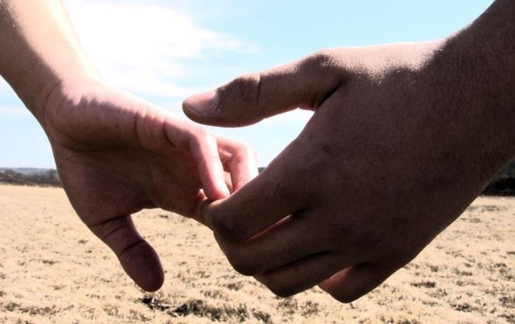 Dobrovolníci z Číny i Mexika zvelebují salaš